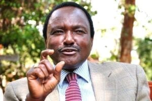 Kalonzo allies deny meeting Uhuru, say Wiper leader not interested in state job