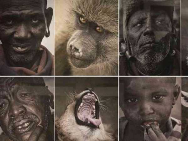 """""""The curator explained that Chinese photographer Yu Huiping was simply trying to 'show the harmony between man and animal in Africa'.""""/VIA OKAYAFRICA"""